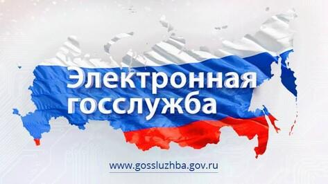 Воронежских чиновников-коррупционеров внесут в специальный реестр