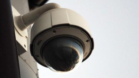 В лискинских лесах установили видеокамеры