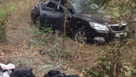 Виновник гибели 3-летней девочки в ДТП в Воронежской области попал под следствие