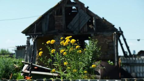 Заброшенные хутора: как пустеют воронежские деревни. Аверинка – Рыбкин