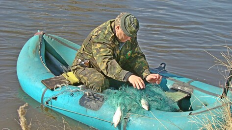 В Новохоперском районе в период нереста выловили более километра сетей