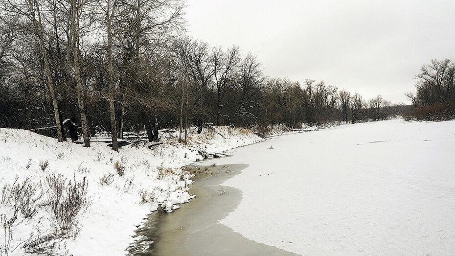 Мужчине, утопившему зимой друга в Воронежской области, дали 8 лет