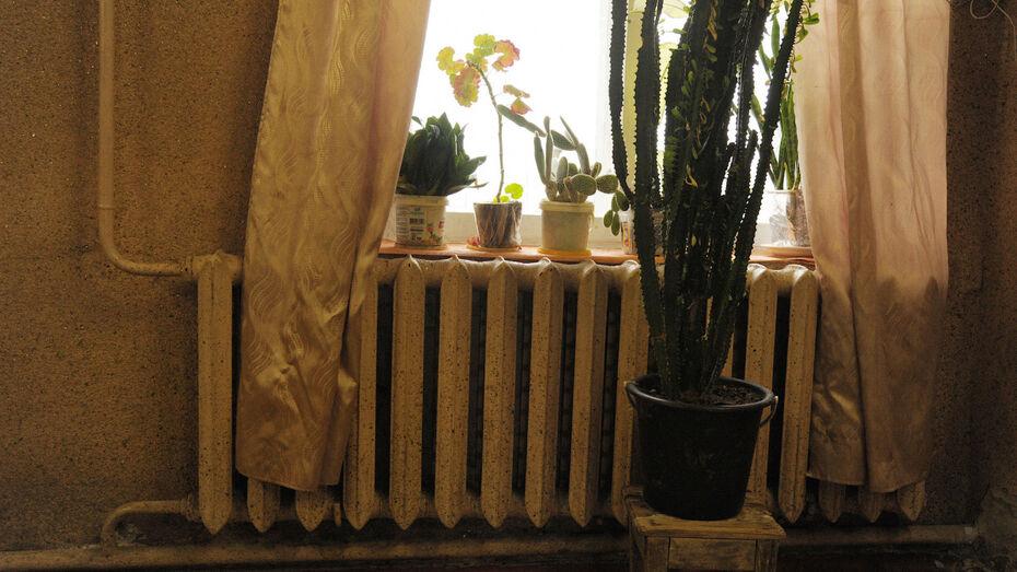 Тепло придет в больницы и школы Воронежской области раньше обычного