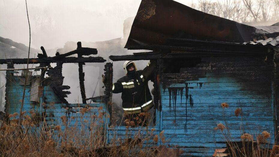 Погибших на пожаре в Воронежской области детей за час до трагедии хотела забрать бабушка