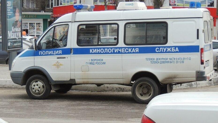 В Воронеже кинологи проверили банк из-за бесхозного пакета