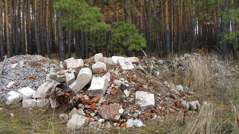 Воронежское предприятие заплатит 795 тыс рублей за загрязнение окружающей среды