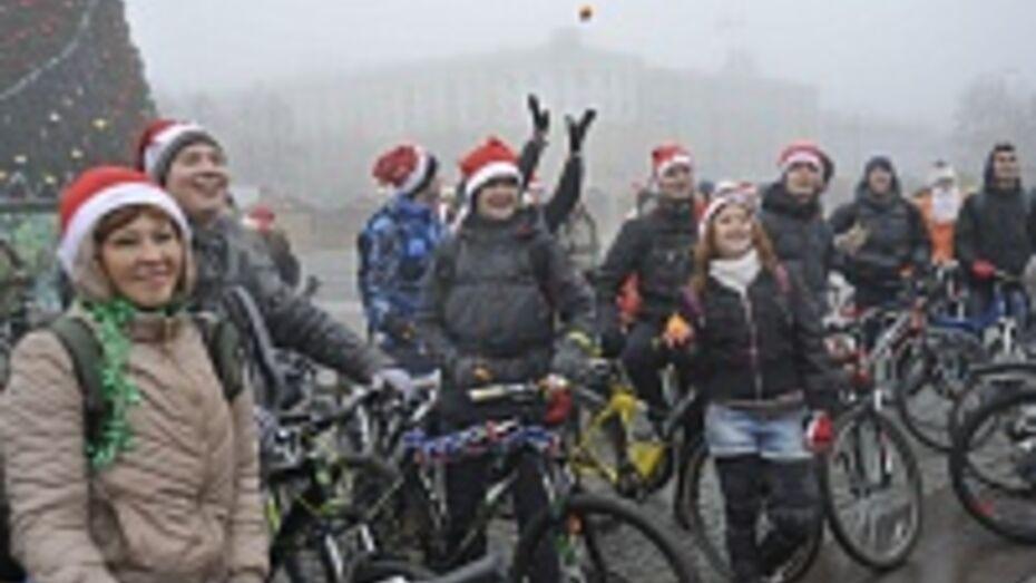 В Воронеже велосипедисты стали Дедами Морозами и устроили «снежную битву» мандаринами