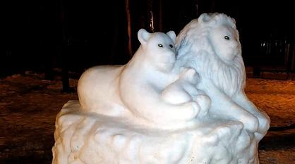 К снежным пингвинам и дельфинам в Воронеже прибавились львы
