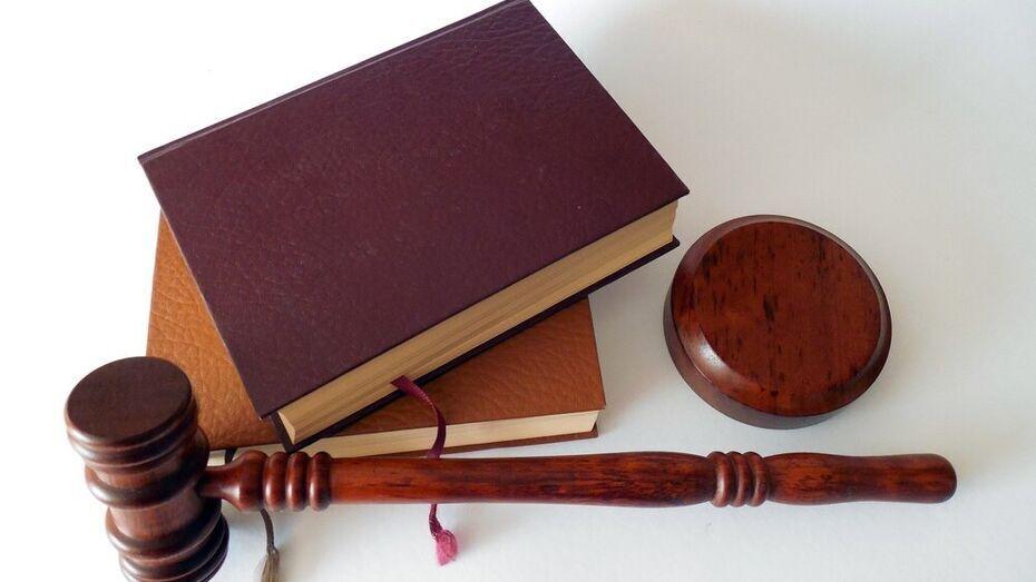 Рамонский суд приговорил к 11 месяцам колонии вора-гастролера за кражу игровой приставки
