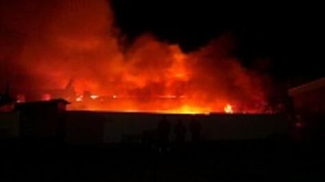 В Борисоглебске сгорел компьютерный магазин Hard Device