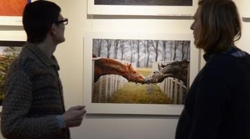 В Воронеже открылась фотовыставка «трех юбилеев»
