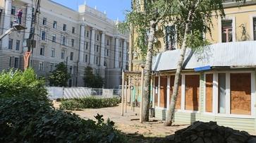 Воронежец пожаловался на спиленные на проспекте Революции деревья