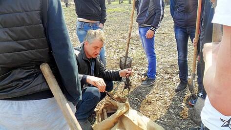В Бутурлиновском районе начали высаживать «Лес Победы»