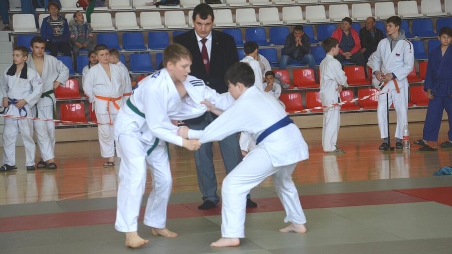 Поворинские дзюдоисты завоевали 14 медалей на областном турнире