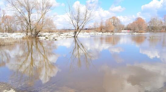 Мост на реке Ворона в Грибановском районе затопило