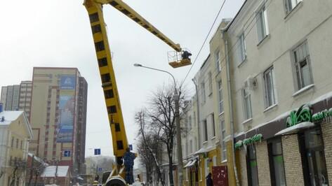 В центре Воронежа за день от снега и наледи очистят крыши 32 домов