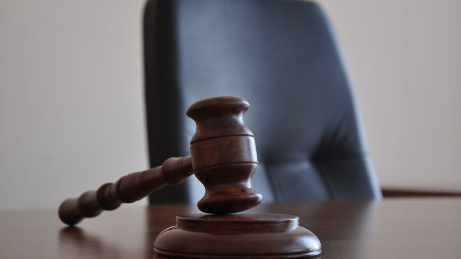 Долг по алиментам в 90 тыс рублей довел жительницу Павловского района до суда