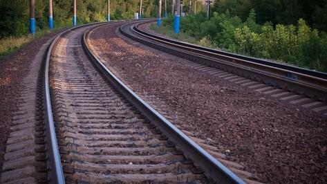 В Воронеже поезд сбил 3-летнего ребенка