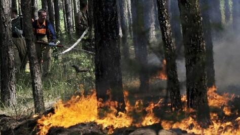 В Воронеже спасатели объявили штормовое предупреждение из-за сентябрьской жары
