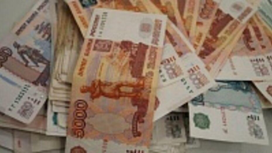 В Воронеже мошенник оставил федеральный бюджет без 30 млн рублей
