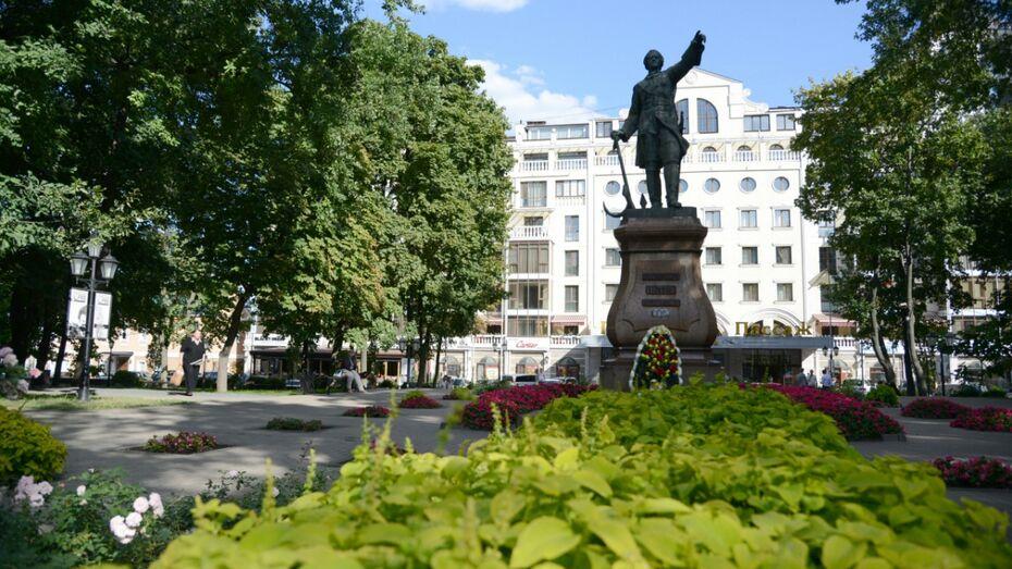 Воронежцев позвали на бесплатный кинопоказ в Петровском сквере