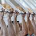 Воронеж примет участников межрегиональных игр «Трудовых резервов»