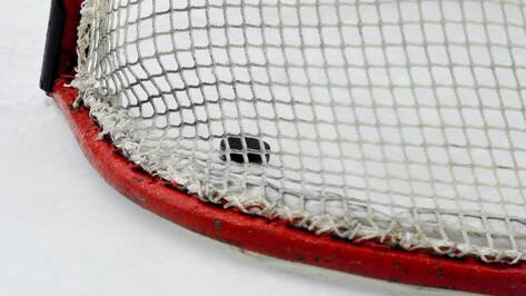 Хоккейный «Бобров» проиграл «Дизелисту» в Пензе