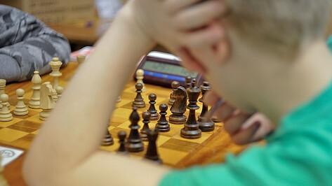 Дополнительное дошкольное образование субсидируют еще в 12 районах Воронежской области