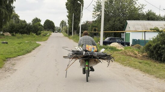 Под колесами легковушки в Воронежской области погиб велосипедист