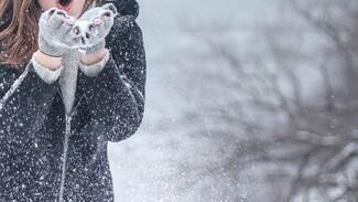 Новогодние каникулы в Воронеже будут снежными
