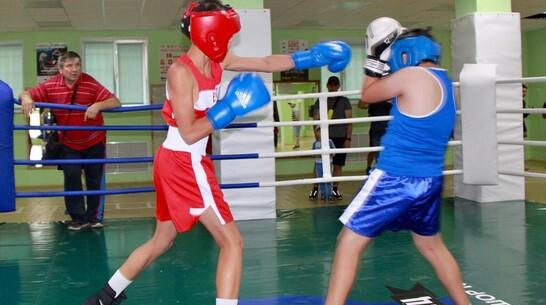 Павловские боксеры взяли 2 «золота» открытого областного турнира