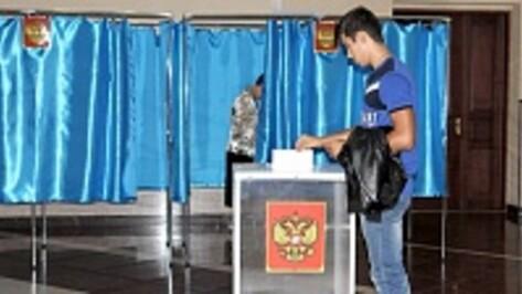 В Бобровском районе Алексей Гордеев набрал 95,2% голосов на выборах губернатора
