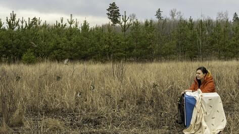 Спасенных на Благовещение певчих птиц вылечили и выпустили на волю под Воронежем