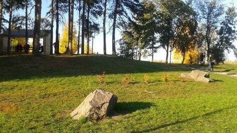 Специалисты Росреестра проконсультируют воронежские семьи в парке