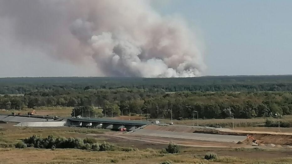 В Воронежской области потушили пожар, который разросся в 12 раз