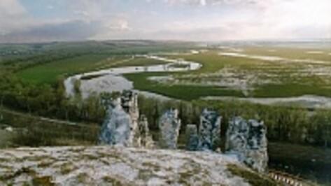 Под Воронежем участники акции «Ночь музеев» построят крепость из картона