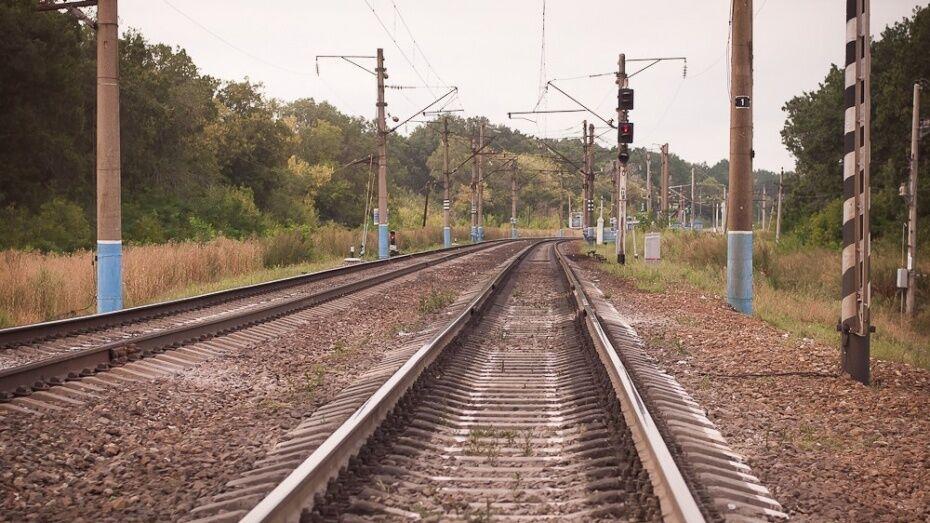Поезд насмерть сбил мужчину в Воронеже у Центрального парка