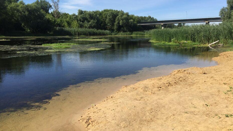 В Острогожске в реке Тихая Сосна утонул 56-летний мужчина