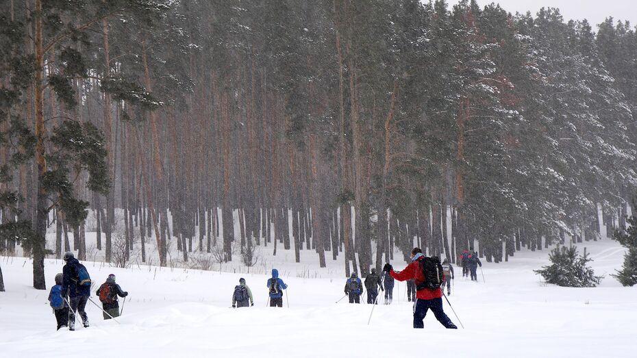 Лыжный марафон памяти Юрия Лопатина пройдет в Воронеже