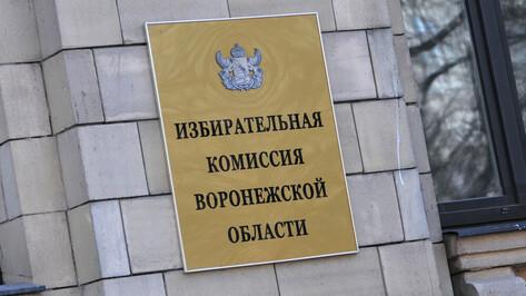 Воронежский облизбирком назначил членов территориальных избирательных комиссий