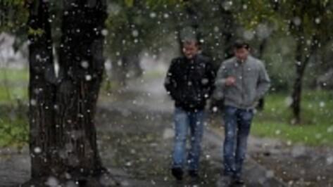Спасатели предупредили воронежцев об октябрьском снегопаде