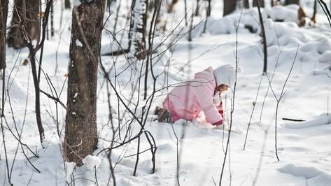 Первые зимние выходные в Воронеже будут снежными