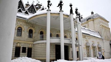 Для контроля капремонта Воронежского театра кукол создадут рабочую группу