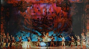 От спектаклей по Черноземью до гастролей по миру: как менялся Воронежский оперный