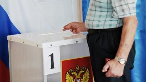 Более 600 избирателей позвонили на горячую линию по выборам в Воронежской области