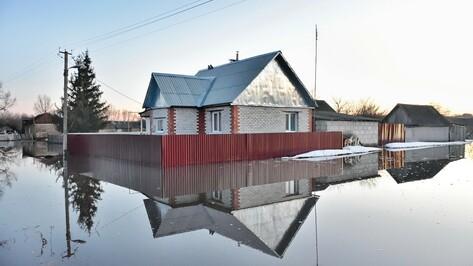 В Панинском районе села оказались в зоне подтопления