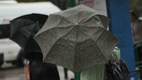 Спасатели предупредили воронежцев о возможном усилении ветра