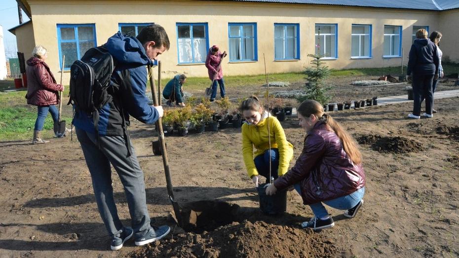 Студенты педуниверситета посадили во дворе богучарской сельской школы 90 деревьев