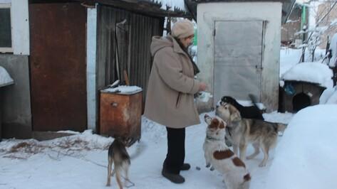 В Каширском районе пенсионерка приютила 4 бездомных собак