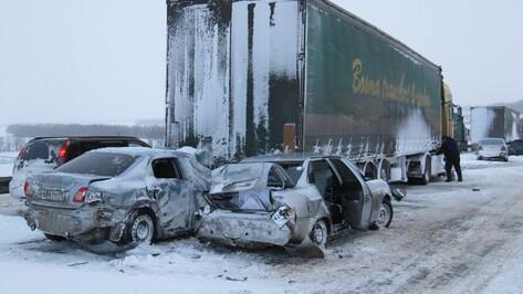 Более 20 машин попали в аварию на трассе в Воронежской области